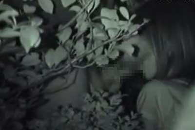 【盗撮動画】深夜の公園で彼女にフェラさせてるカップルがいたので盗撮していたら、彼氏ガマンできずにバックで挿入始めちゃいましたww【無修正】