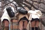 【盗撮動画】三人のミニスカ素人ギャルたちが川の下の何かを見るために柵を乗り出して後ろからパンティー丸見えの瞬間を見事に隠し撮り!ww